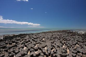 Photo: Stromatoliten