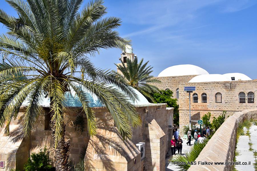 Экскурсия в Наби Муса в Иудейской пустыне.