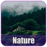 Nature Wallpapers - HD Icon