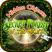 Hidden Objects Night Forest