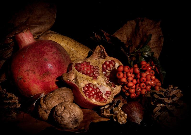 Frutti d'Autunno di Rino Lio