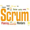 Scrum master questions bank APK