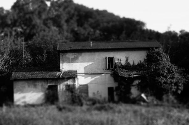 L'abbandono di morganio