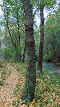Photo: Mesones - camino junto río Mundo