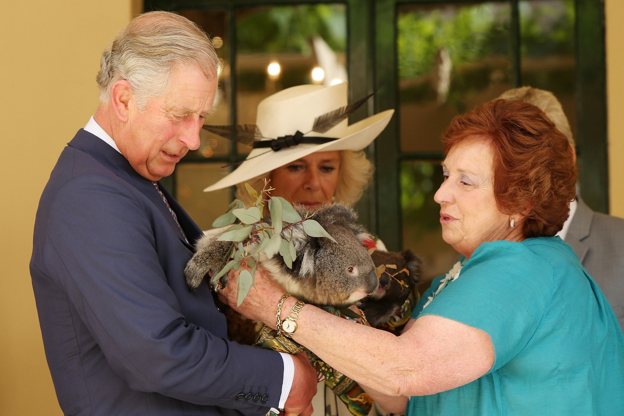 Photo: ADELAIDE, AUSTRALIA - NOVEMBER 07:  Camilla, Duchess of Cornwall and Prince Charles, Prince of Wales hold koalas with Koala rescue volunteer, Rae Campbell, at Government House on November 7, 2012 in Adelaide, Australia. The Royal couple are in Australia on the second leg of a Diamond Jubilee Tour taking in Papua New Guinea, Australia and New Zealand.  (Photo by Morne de Klerk/Getty Images)