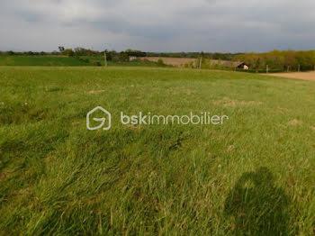 terrain à Bourdalat (40)