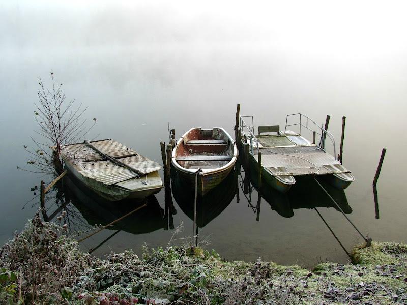 Nebbia sul fiume di donyb