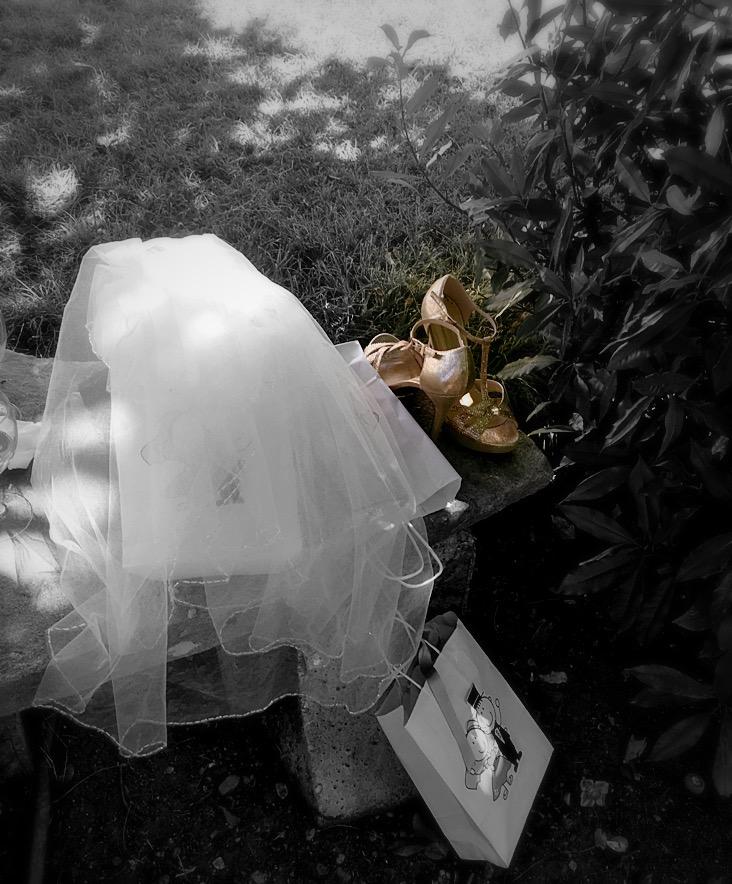 Dov'è la sposa ?? di annabus58