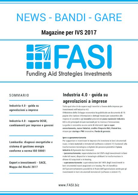 Magazine IVS  2017