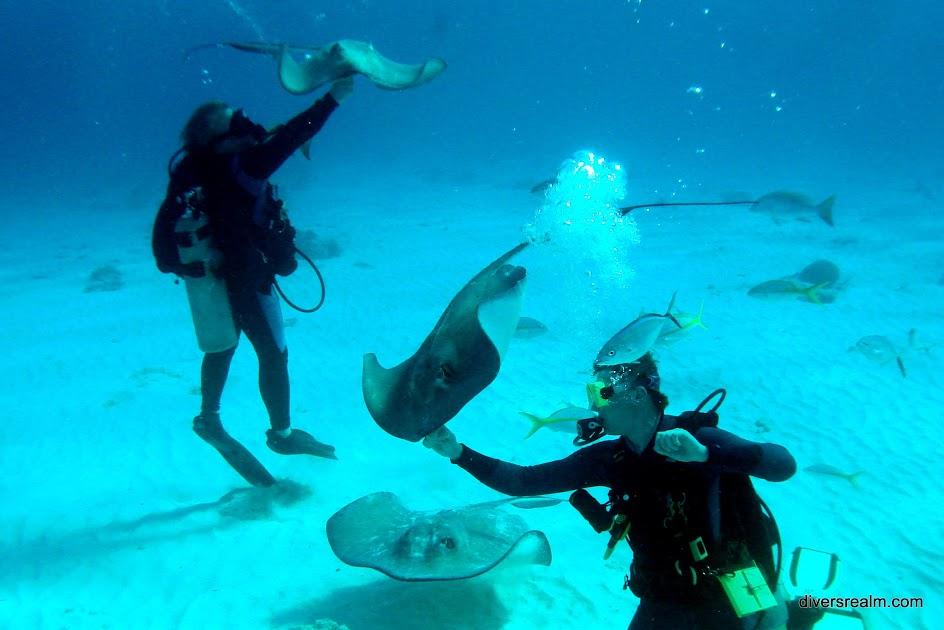 2013 - Grand Cayman