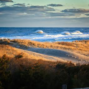 Coast Guard Beach  by Trevor Murphy - Landscapes Beaches ( barrels, surfing, tmurphyphotography, randy townsend, costa rica )