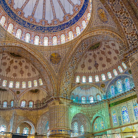The Blue Mosque by Abhay Desai - Buildings & Architecture Public & Historical ( blue mosque, interiors, turkey, istanbul, religious )