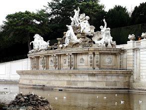 Photo: austria, travel, neptune, fountain, schonbrunn, vienna, wien