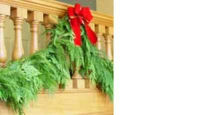 15 feet of fragrant, fresh cut western cedar garland to adorn your front door or porch railing (bow sold separately)