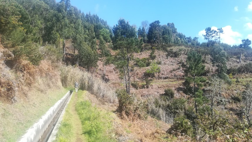 Along the levada nova. During this quarantine, there is no living soul in sight