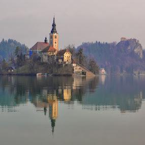 Island Bled- Slovenia by Stane Gortnar - Buildings & Architecture Public & Historical ( church, slovenia, bled, castle, lake, island )