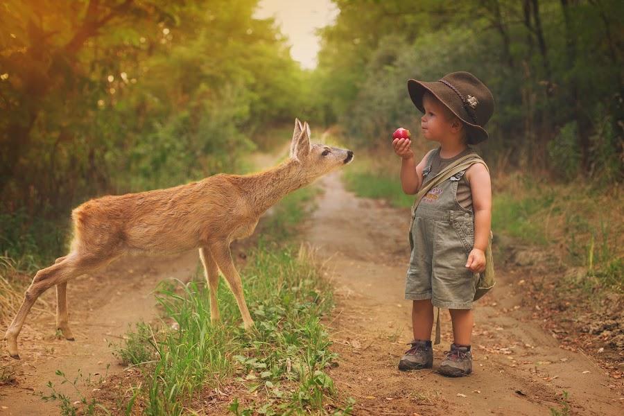 Z by Diána Barócsi - Babies & Children Toddlers ( outdoor, toddler, boy, animal, deer )