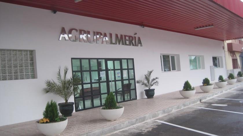 Instalaciones de Agrupalmería justo en el momento en el que fueron modernizadas.