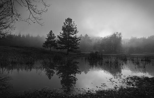 Nebulosi riflessi di pina_de_curtis