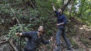 Zachary Quinto in the Panama Jungle thumbnail