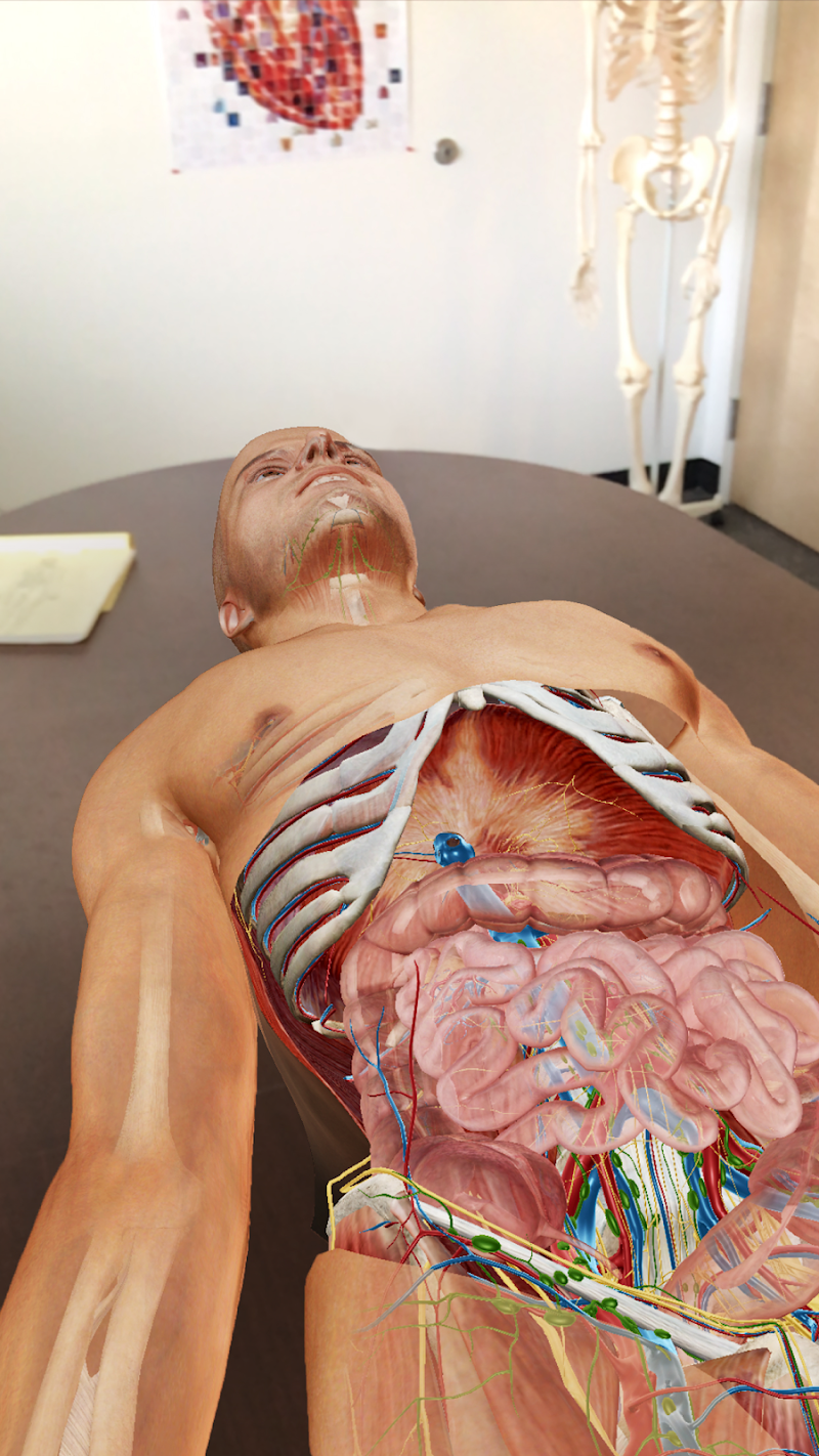 Human Anatomy Atlas 2019 Complete 3d Human Body Apk Cracked Free