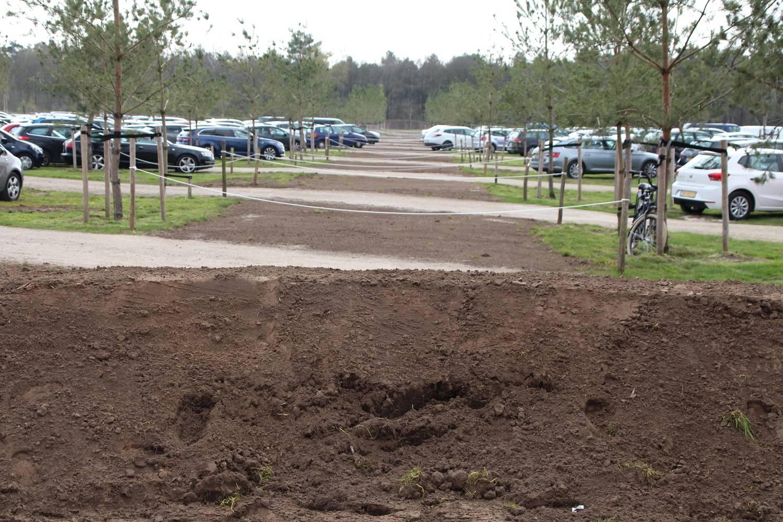 Oude oprij route is nu ingezaaid met gras.