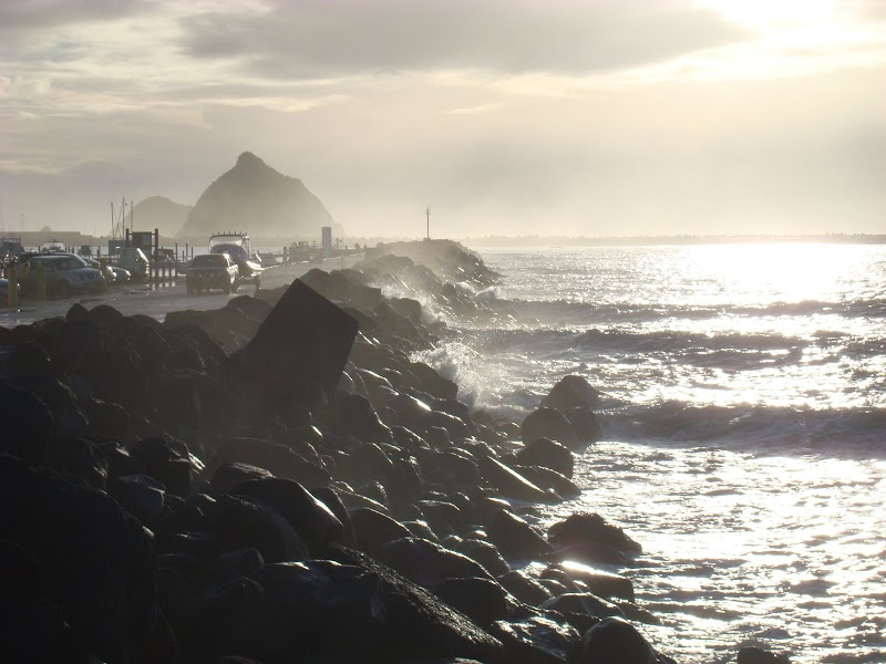 New Plymouth 2010