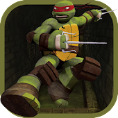 The Ninja Adventure Turtle