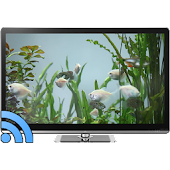 Fish Tank on TV via Chromecast