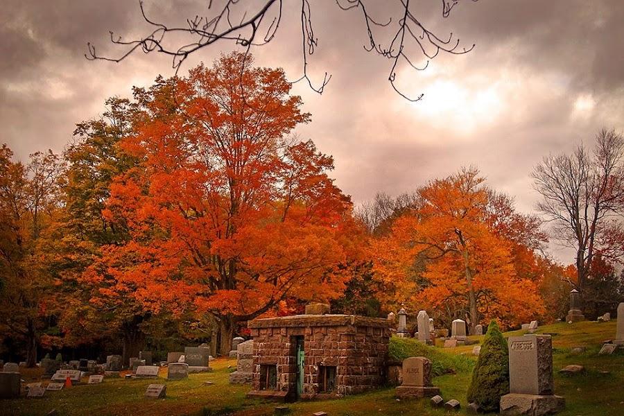 Death's Glorious Palette by Nancy Senchak - City,  Street & Park  Cemeteries