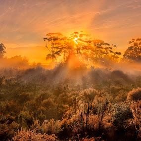 One Fine Morning by David Morris - Landscapes Sunsets & Sunrises ( landscapes )