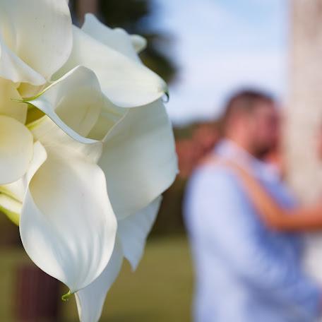 Wedding photographer Paco Gomez (defoto1). Photo of 31.10.2017