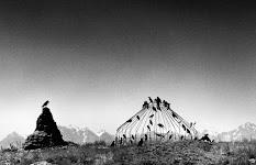 kraaien op een geraamte van een tent en een termitenheuvel