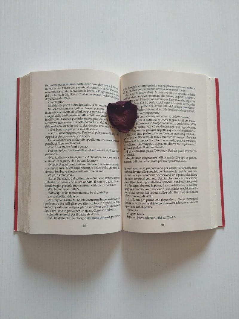Il Petalo Di Un Libro di lia25_
