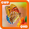 Macro Wallpapers QHD icon