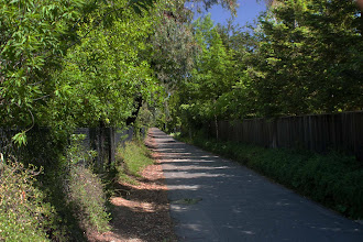 Photo: North Davis (Covell) canal - Flicker Ave Park area