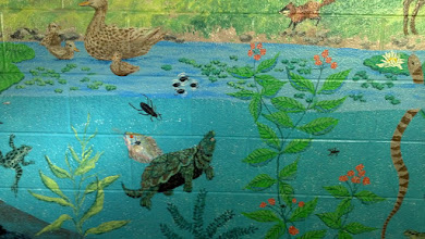 Photo: mural in the women's bathroom at the Edwin Warner Park Nature Center. How fancy!