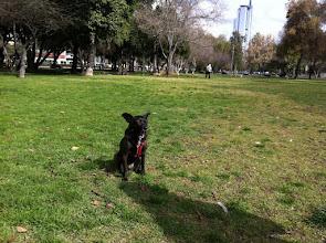 Photo: Santiago, Chile, August 2011