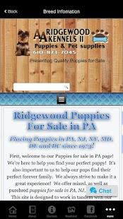 Ridgewood Puppies - náhled