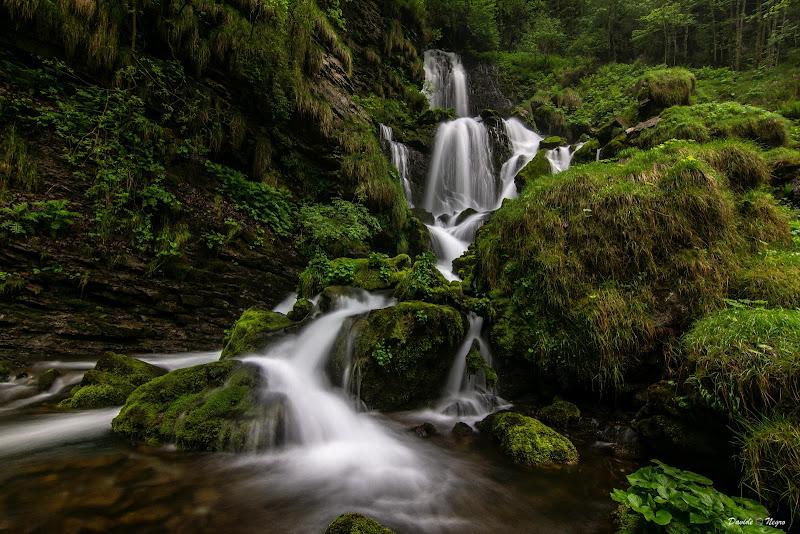 cascate della sorgente di davide_negro