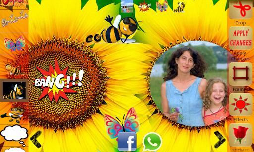 Sunflower Photo Frames Effects