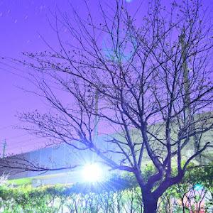 フィット GD3 1.5Aのカスタム事例画像 STANCEさんの2020年03月31日08:12の投稿