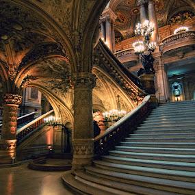 The Palais Garnier by Brandon Rechten - Buildings & Architecture Public & Historical ( palais garnier, phantom of the opera, opera house )