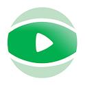 V9 icon