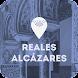 Real Alcázar de Sevilla - Soviews