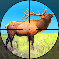 Wild Hunter: Jungle Animal Hunting Shooting Games APK