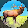 Wild Hunter: Jungle Animal Hunting Shooting Games APK