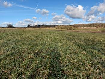 terrain à Molineuf (41)