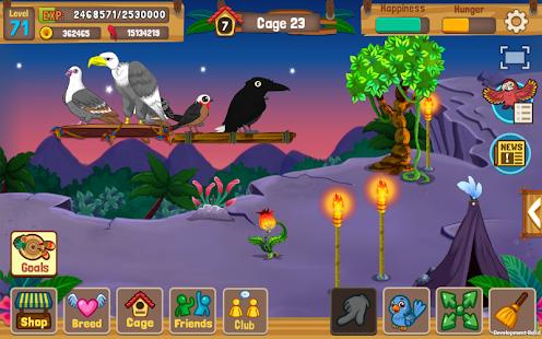 Download Full Bird Land Paradise: Pet Shop Game, Play with Bird 1.64 APK