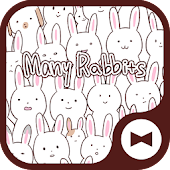 Wallpaper Many Rabbits Theme